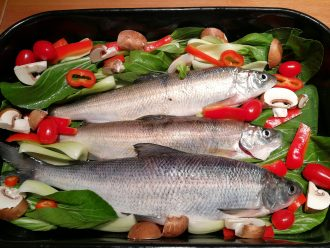 Whitefish on veggies